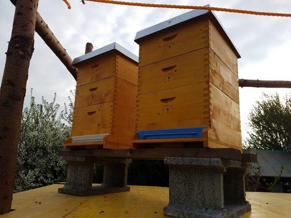 maden der wachsmotte wiener prater honig. Black Bedroom Furniture Sets. Home Design Ideas