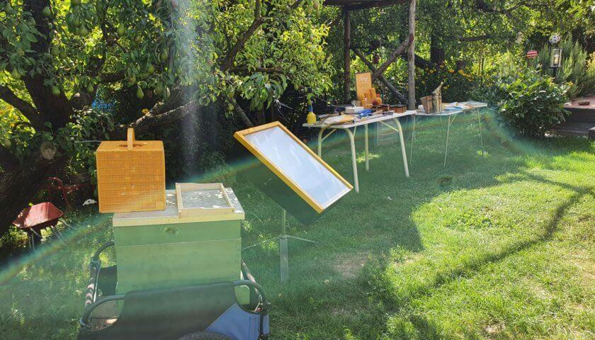 Tag des offenen Bienestocks