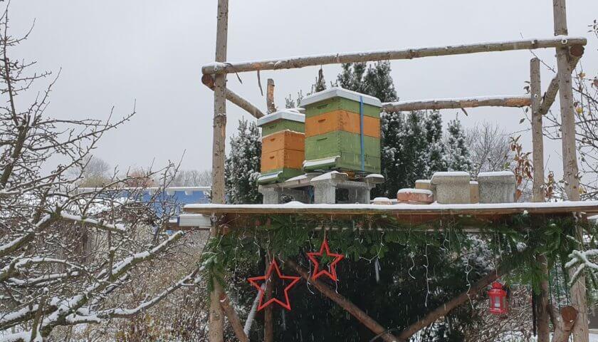 Bienenstöcke im Winter